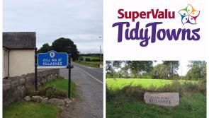 SuperValu Tidy Towns 2017: Tidy Towns adjudicator experiences hazardous N63 during Killashee walkabout