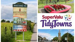 SuperValu Tidy Towns 2017: Ballymahon commended for its approach ahead of Center Parcs Longford Forest becoming operational