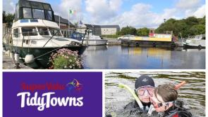 SuperValu Tidy Towns 2017: 'There is a distinct pride of place amongst Clondra inhabitants'