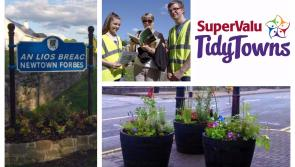 SuperValu Tidy Towns 2017: Newtownforbes