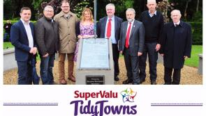 SuperValu Tidy Towns 2017: Derrahaun Tidy Towns initiated 1916 project one of the best