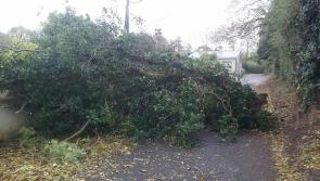 Leitrim County Council confirm additional roads impassable due to Ophelia
