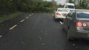 #Ophelia alert: Up to 30 trees fall, blocking roads across Longford in wake of Storm Ophelia