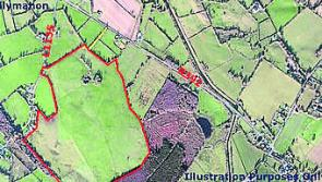 Longford farm totalling 100 acres sells for €720k at auction