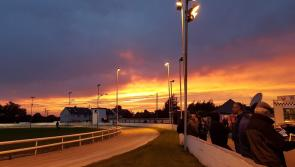 Longford Greyhound Stadium hosting appreciation evening on Bank Holiday Monday