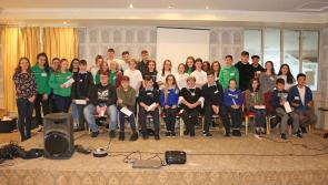 Comhairle na nÓg: looking out for Longford's youth