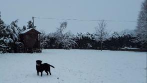 Kilkenny sport: snow leaves beautiful landscape as sport is obliterated