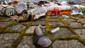 FULL REPORT: Litter survey finds 'coffee cups and fast-food wrappers' on main Carlow road