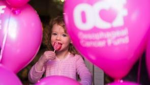 Volunteers needed in Leitrim for Lollipop Day
