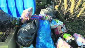 Fury over festive dumping in Ballyleague