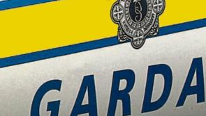 Thousands of euro worth of tools stolen in Thomastown