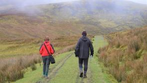 Hill farmers are concerned about recreational users not abiding by the countryside code during Covid-19