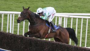 THE PUNTER'S EYE: Irish Grand National Tips and Preview 2018
