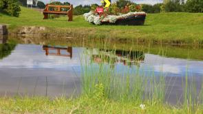 €500k upgrade for Longford town's Royal Canal