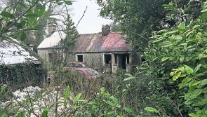 Shock as Abbeylara pensioner dies in house fire