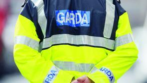 Longford gardaí smash suspected €100k cannabis growhouse