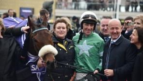 People have taken to Longford businessman's Cheltenham fancy Presenting Percy
