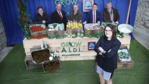 Aldi offers huge opportunity to Longford food and drinks producers