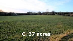 Thirty-seven acre non-residential farm sells for €307,000 at auction
