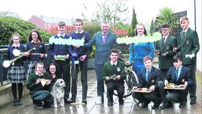 Moyne and Granard schools bid for success in Student Enterprise Programme National Finals