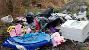 Longford allocated €44,000 to tackle illegal dumping and litter