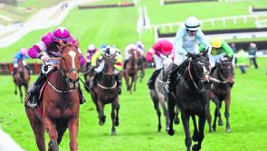 Punchestown Tips: The horses worth backing on Day 3 (Thursday) at Punchestown