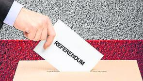 Yes or No? Longford politicians have their say on referendum