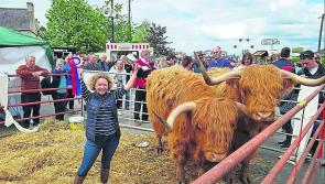 Ballinalee's Hamish and Henry crowned  champions at Dunderry Fair