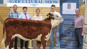 County Longford Show & Country Fair launch