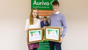 Final call for applications to Aurivo Scholarship Programme