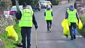 Ballymahon Tidy Towns: 'A battle we might be losing'