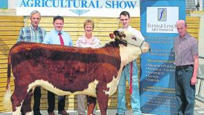Co Longford Show and Country Fair-showcasing the very best of rural life