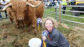 Hamish and Henry will be among top attractions at 117th County Longford Show & Country Fair