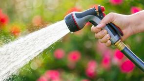 Hosepipe ban for six weeks in Longford as water shortages emerge
