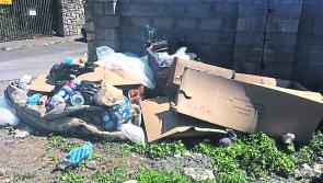 Domestic waste disposal service needed to combat dumping in Longford