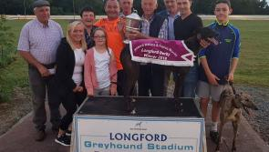 Cabra Hurricane storms to glory in €10,000 Longford Greyhound Stadium Derby