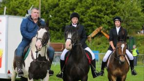 Pictures:  Ballinamuck Olde Fair Day