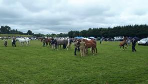 Crowds turn out in force for 66th Granard Agricultural Show