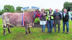 Excitement builds ahead of this weekend's 61st Arva Show