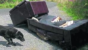 'It's time for judges to get tough with Longford's illegal dumpers'