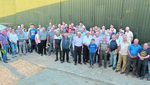 Longford lamb producers lead the way at annual 'Open Day'