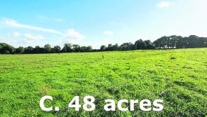 Forty-eight acre Longford non-residential farm put up for sale
