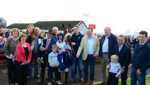 Roscommon Races return on August 20