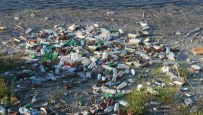 High level of rubbish in Ireland's waterways a threat to angling tourism