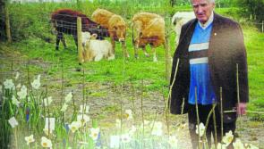Longford bids a fond farewell to a 'farmer, daffodil breeder,  and friend'