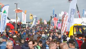 BREAKING: Day 2 of National Ploughing Championships cancelled