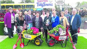 Abbeyshrule clean up at Tidy Towns awards