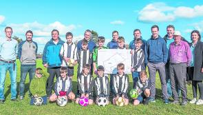 Moves afoot in Lanesboro for astro turf pitch