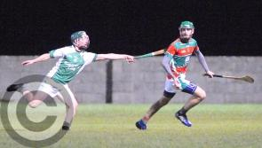 Longford hurling kings Wolfe Tones conquer Wicklow opponents Avondale