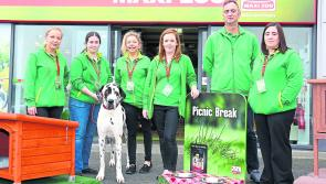 Longford pet owners set to pounce on Maxi Zoo's Black Friday deals